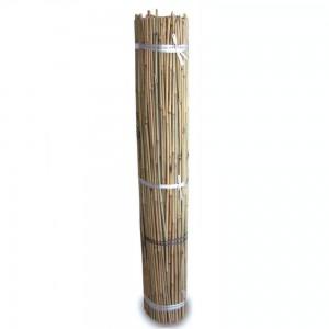 Tutores de Bambú 1 m (300 und)