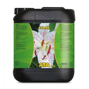 ATA XL 5L