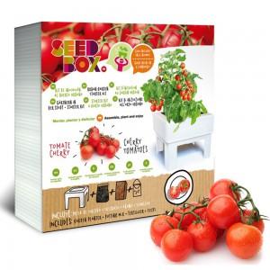 SeedBox Cultívame tomate...
