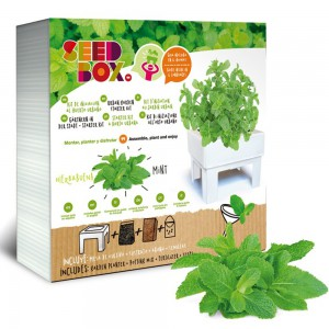 SeedBox Mini huerto...