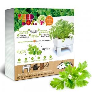 SeedBox Mini huerto perejil